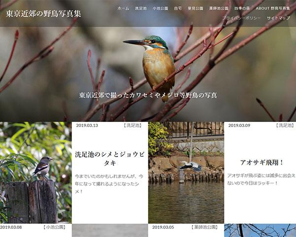 東京近郊の野鳥写真集