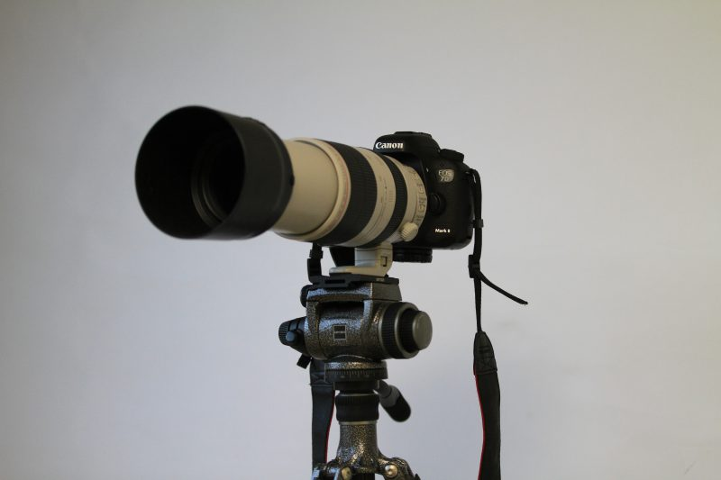 EOS 7D Mk2+EF100-400mm F4.5-5.6L IS II USM